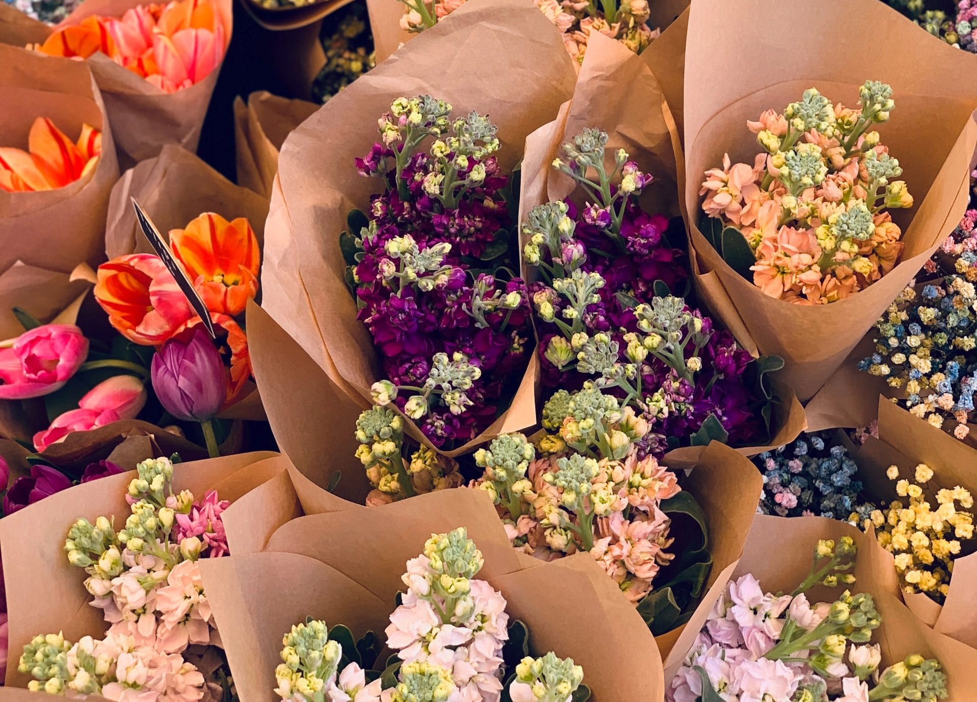Flower Industry Statistics - Featured Image