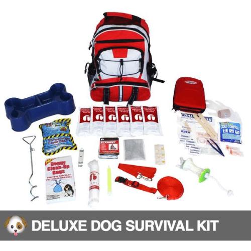 Best Survival Kit - Stealth Angel Survival Review